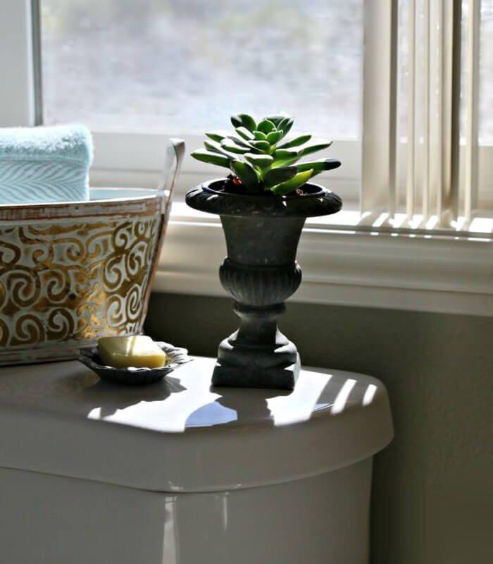 Suculentas Decoração Banheiro