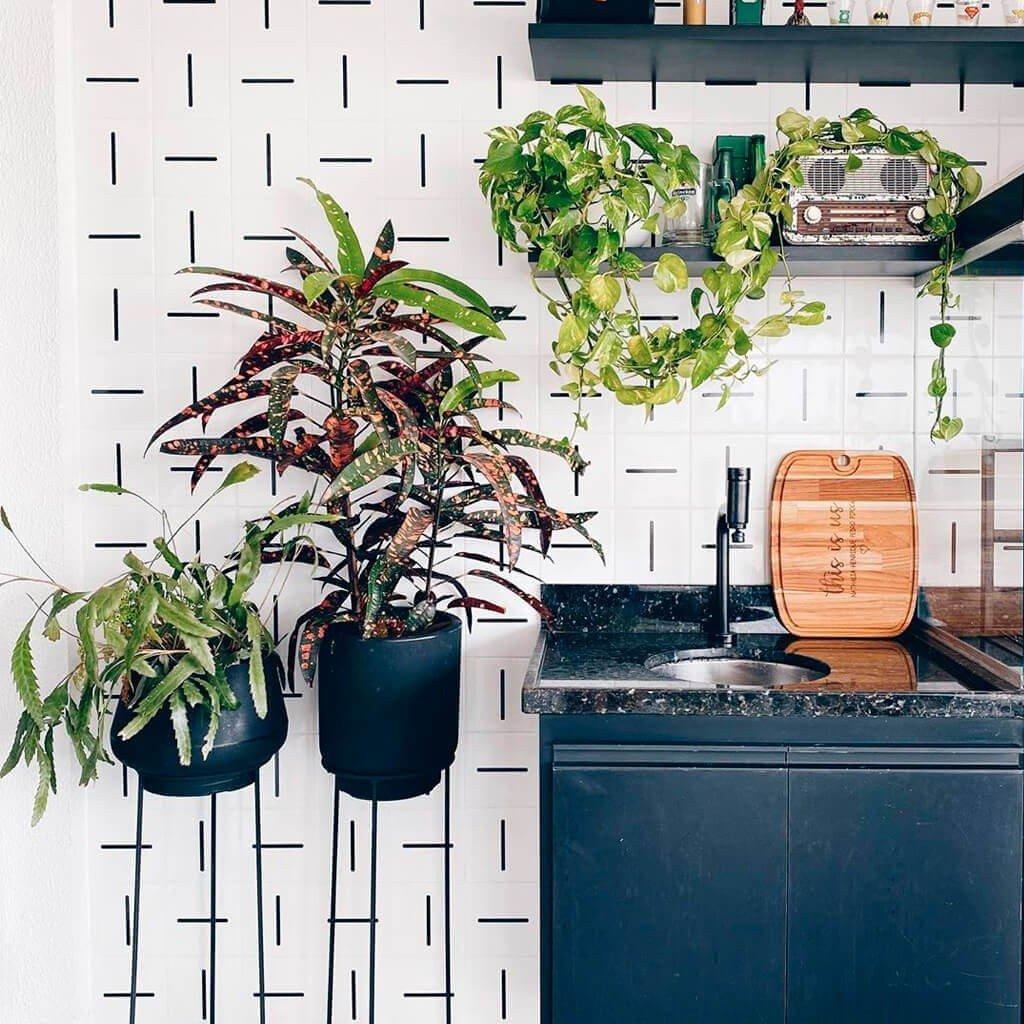 Vasos Decorativos Plantas Cozinha