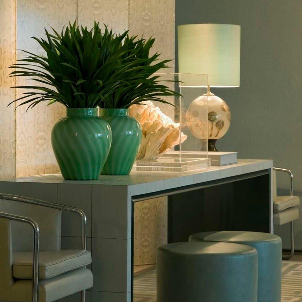 Vasos Decorativos Plantas